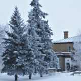 Government House Winter